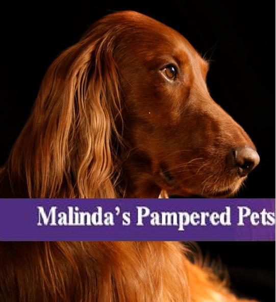 Logo for Malinda's Pampered Pets