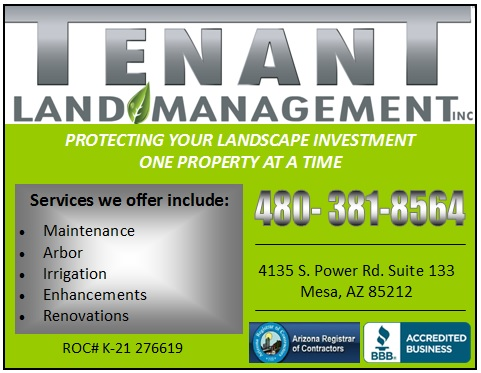 Logo for Tenant Mangement